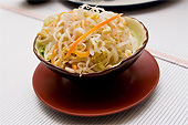 Moyashi Salat